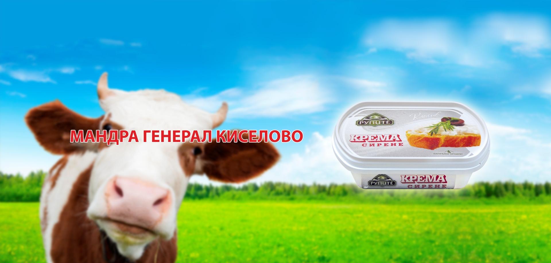 DAIRY GENERAL KISELOVO